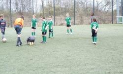 Borussia M´gladbach - SV Bedburg-Hau (F1) 2013_39