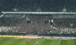 Borussia M´gladbach - Hoffenheim (Besuch mit den F-Junioren) 2014_89