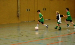 Dietmar-Müller-Hallen-Cup 2013 (Bambini)