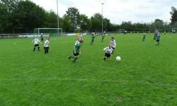 Ecke-Schüller-Cup 2011_12