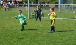 Ecke-Schüller-Cup 2011 (Bambini)_31